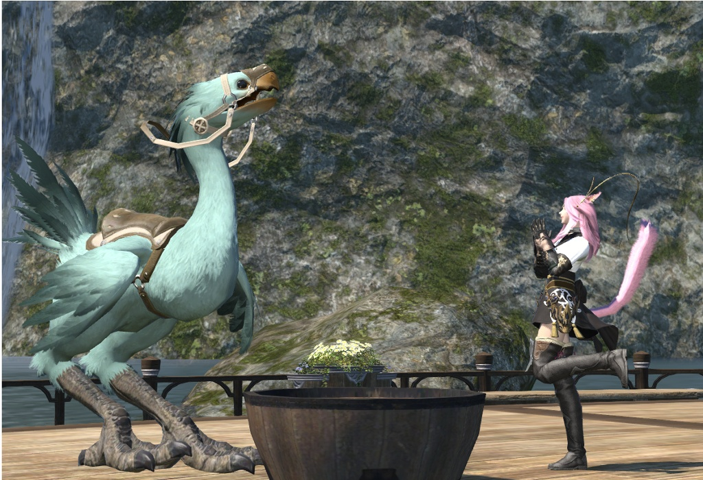 ffxiv how to change chocobo color