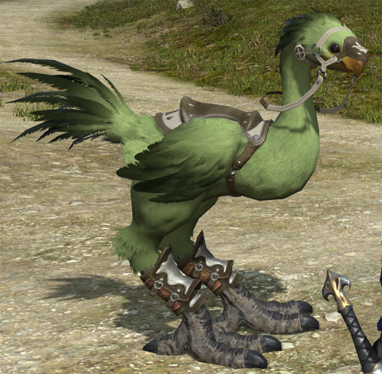 how to change chocobo color ffxiv