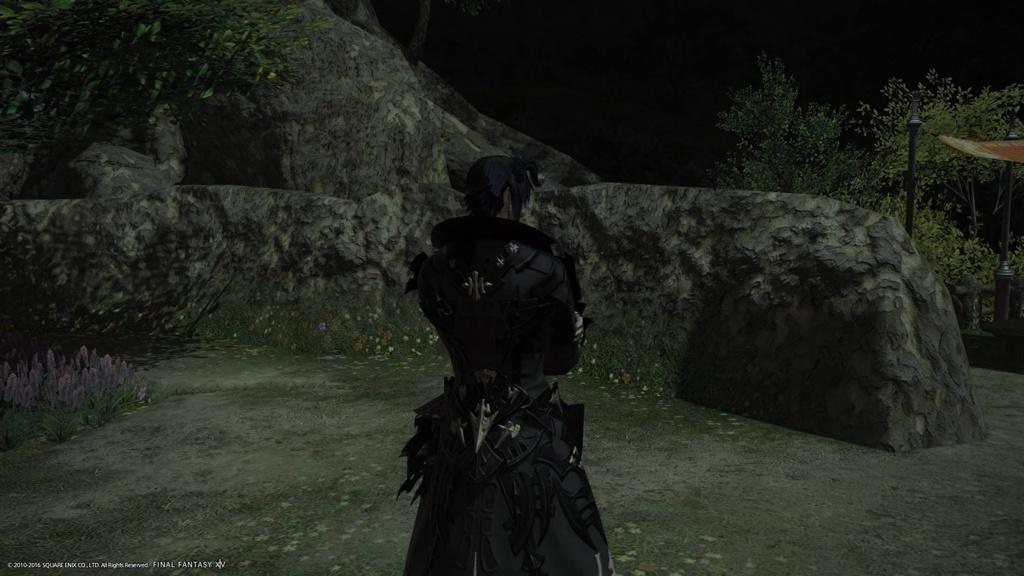 final fantasy xiv summoner guide