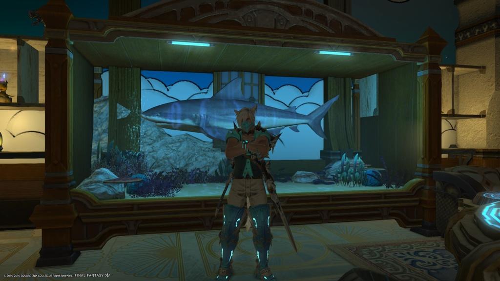 Xl Aquarium Decorations