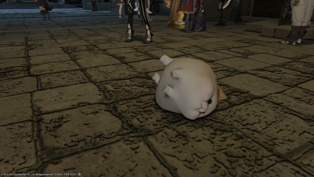 Fat Cat Ffxiv Pet