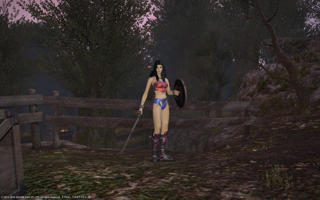Esper Eidolon Blog Entry Wonder Women Glamour Final