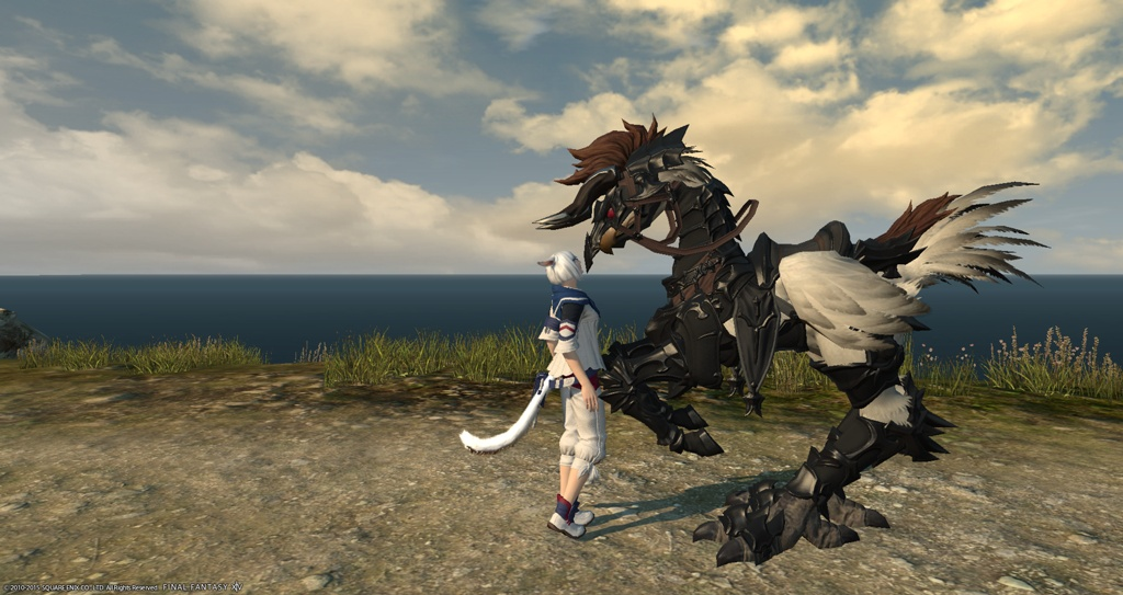 Lucky Gambler Blog Entry `My Chocobo Bardings` | FINAL ...