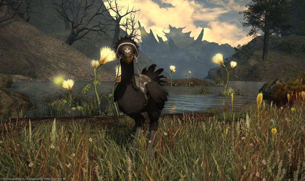 ff14 how to get fat chocobo
