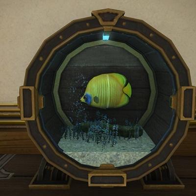 Kirito Bladerunner Blog Entry All Saltwater Aquarium Fish Preview 5 5 Final Fantasy Xiv The Lodestone